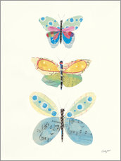 Acrylic print  Butterfly Charts IV - Courtney Prahl