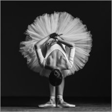 Premium poster Young Dancer