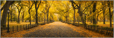 Premium poster  Central Park in New York City, USA - Jan Christopher Becke