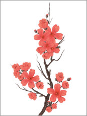 Canvas print  Cherry blossoms coral
