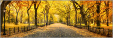 Premium poster  Central Park in Autumn - Art Couture