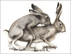 Wood print  Couples of Hares - Ilona Schadauer