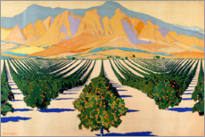 Premium poster  South African Orange Orchards - Guy Kortright