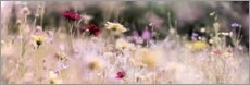 Canvas print  Panorama of a wildflower meadow - Lichtspielart