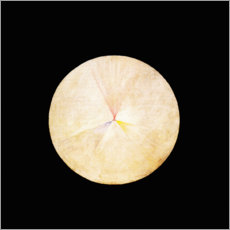 Foam board print  The Swan, No. 14 - Hilma af Klint