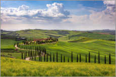Canvas  Spring in Tuscany - Michael Valjak