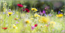 Wood print  Wildflower meadow in bloom - Lichtspielart
