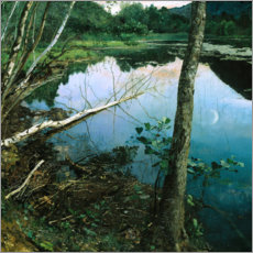 Canvas print  Summer night - Eilif Peterssen
