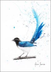 Premium poster Peaceful Blue Bird