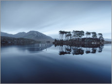 Aluminium print  Pine Island at the Connemara Nationalpark - Philipp Dase
