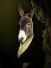 Gallery print  Donkey Jérome - Philippe Tyberghien