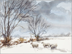 Canvas print  Sheep in the Snow - Mary Want