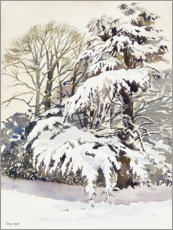 Acrylic print  Winter in the garden - Mary Want