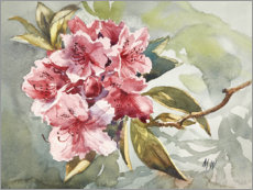 Wall sticker  Rhododendron watercolor - Mary Want