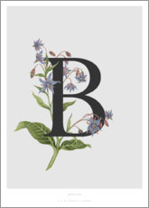 Wood  B is for Borage - Charlotte Day