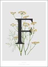 Aluminium print  F is for Fennel - Charlotte Day