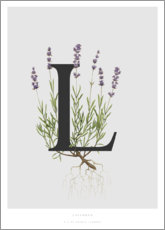 Aluminium print  L is for Lavender - Charlotte Day