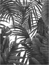 Premium poster Tropical jungle in black and white