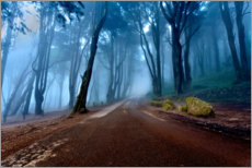 Gallery print  The road of kings - Jorge Maia