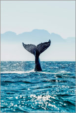 Canvas print  Whale Tail - into the deep. - Art Couture
