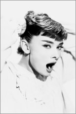 Canvas print  Audrey Hepburn Yawning - Celebrity Collection