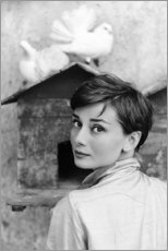Premium poster Audrey Hepburn at the dovecote