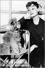 Canvas print  Audrey Hepburn with a puppy - Celebrity Collection
