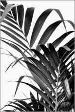 Premium poster Palm leaves II