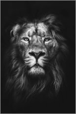 Aluminium print  LION - Art Couture