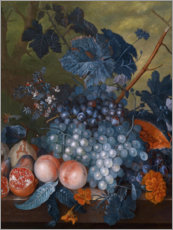 Wall sticker  Still life with grapes, pomegranates and other fruits - Jan van Huysum