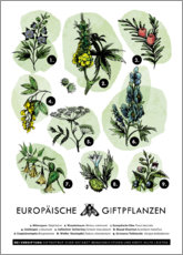 Premium poster  European poisonous plants (German) - Velozee