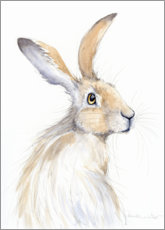 Canvas print  Pretty hare