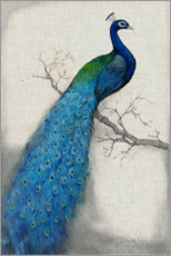 Wood print  Peacock Blue I - Tim O'Toole