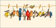 Wood print  Bird Menagerie II - Wendy Russel