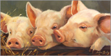 Premium poster  Three little pigs - Carolyne Hawley