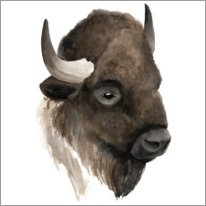 Foam board print  Buffalo portrait - Grace Popp