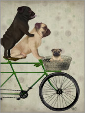 Gallery print  Pugs on Bicycle - Fab Funky