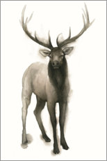 Canvas print  Majestic stag - Grace Popp