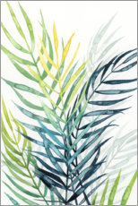 Gallery print  Palm leaves in the evening light II - Grace Popp