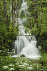 Premium poster  Waterfall in the forest, France - Tobias Richter