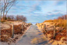 Premium poster  Beach path on Usedom - Reemt Peters-Hein