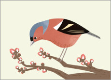 Wall sticker  Chaffinch - Sandy Lohß