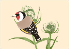 Foam board print  Goldfinch - Sandy Lohß