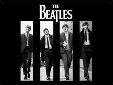 Premium poster  The Beatles - Entertainment Collection
