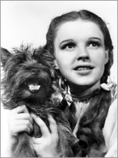 Acrylic print  Judy Garland, the Wizard of Oz