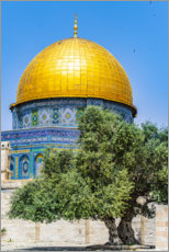 Premium poster  Dome of the Rock with olive tree - HADYPHOTO