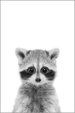 Canvas print  Raccoon Baby - Sisi And Seb