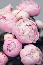 Premium poster  Peonies in pink - Sisi And Seb