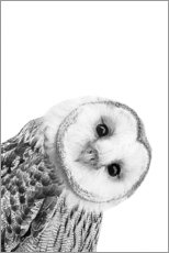 Wood print  Snow Owl - Art Couture