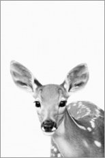 Canvas print  Young deer - Art Couture